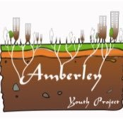 Amberley Youth Project Logo. A group of flats are shown and, below ground, roots connecting them together. The roots spell the word Amberley.