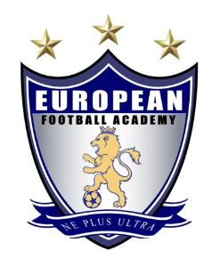 Logo for the European Football Academy