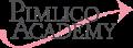 Pimllico Academy