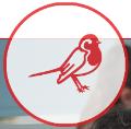 Robinsfield Infant School logo