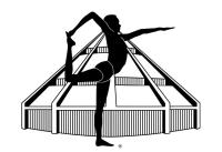 Iyengar Yoga certification Mark. Available only to bonafide Iyengar Yoga teachers.