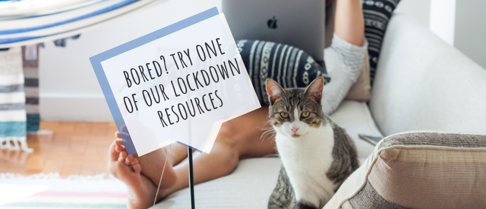 Bored? Try one of our lockdown resources