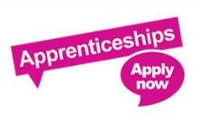 Cumbria County Council Apprenticeship Logo