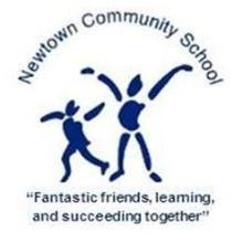 Newtown Community School Logo