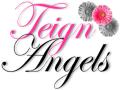 Teign Angels logo