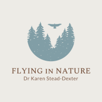 Flying in Nature logo