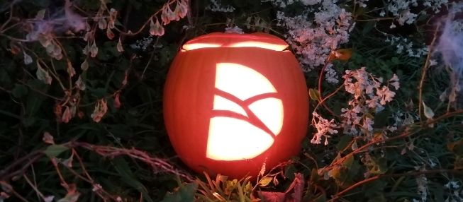 Have a spooky and safe Halloween!