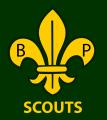 new shildon scouts