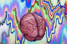 Graphic image of the brain