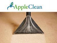 Carpet Cleaining in Tunbridge Wells