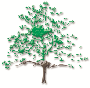 Blackmoor Tree Logo