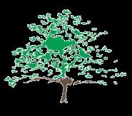 School Logo, a green tree