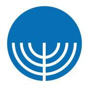 King David School Logo