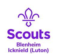 Blenheim Scout Group logo