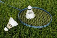 Picture of a badminton racket