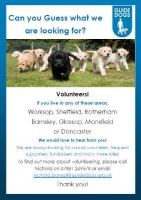 Volunteer recruitment poster for Guide Dogs UK