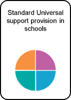 Standard Universal support provision in schools
