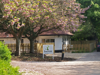 Beanstalk Nursery & Day Care