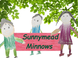 Sunnymead Minnows