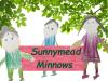 Sunnymead Minnows
