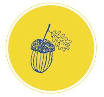 Little Acorns logo