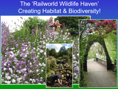 Rail World Wildlife Haven