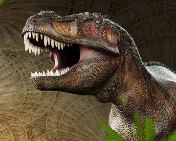 T. rex: The Killer Question