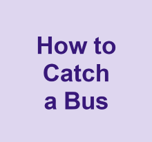 How to catch a bus