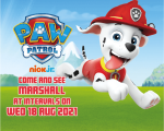 Paw Patrol Picture.