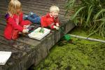 Pond Dipping Picture.