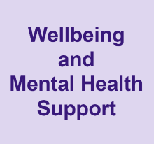 Wellbeing and Mental Health Support