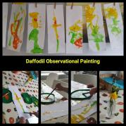 Daffodil observational painting