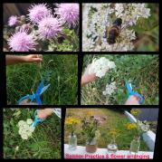 Scissor Practice and Flower Arranging