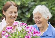 Professional carers to support you at home