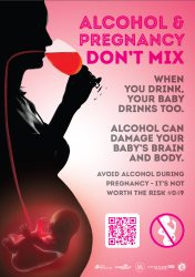 People's Information Network | Alcohol and Pregnancy Don't
