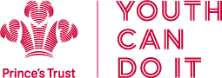Picture of the Prince's Trust logo