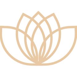 Nova Recovery Logo