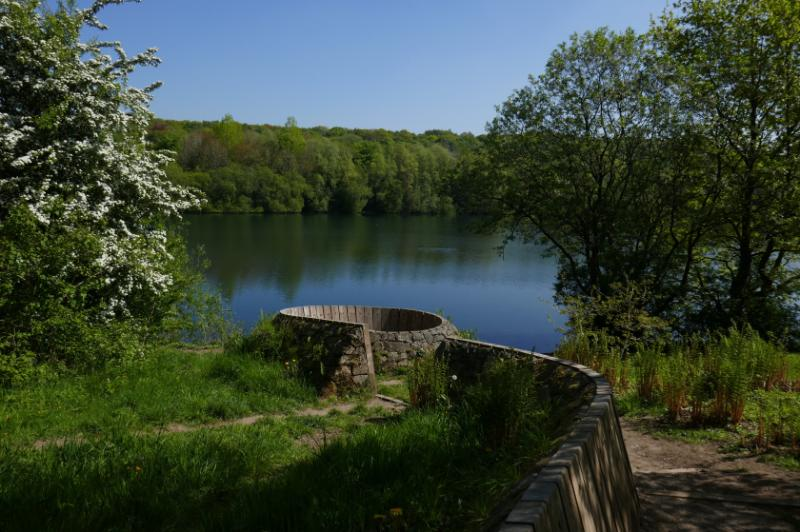 Lake view and woodlands at Clifton Country Park