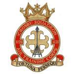 RAF Cadets badge