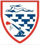 Deyes High School Logo