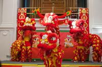 Lion dancing performed in Chinese New Year