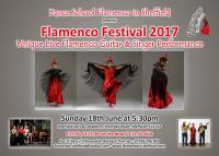 Flamenco Show in Sheffield