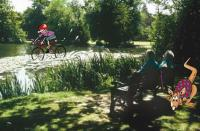 Image of Family Friendly Walks - Ellesmere Extravaganza