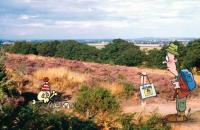 Image of Family Friendly Walks - Nesscliffe Nonsense The Cliffe
