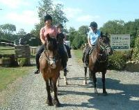 Image of Mill Farm Riding Centre