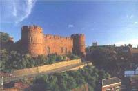 Image of Shrewsbury Castle & The Shropshire Regimental Museum