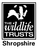 shropshire_wildlife_trust.png