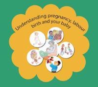 Understanding your pregnancy logo