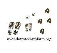 Down to Earth Farm logo