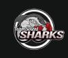Solent Sharks